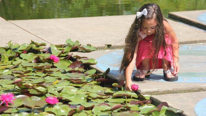 Tylee Lanpher explores the wetlands at Discovery Center at Murfree Spring in Murfreesboro in 2014.