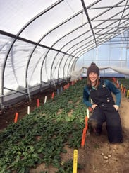 Graduate student Kaitlyn Orde prepares to harvest spinach