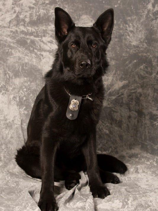 636594700800630451-FON-0416-police-dog.jpg