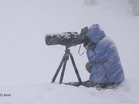 Photographer Sumio Harada filming mountain goats during