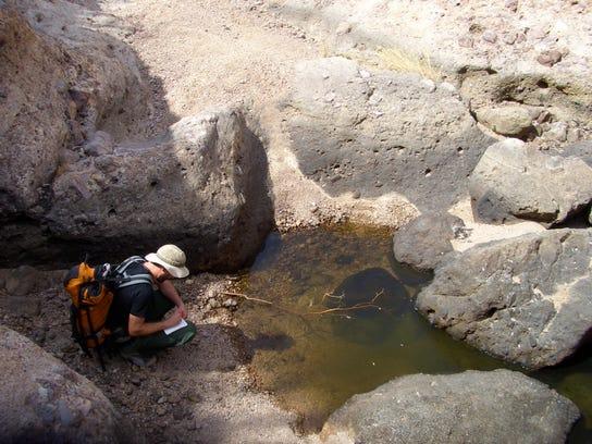 Dry Streams Study 1