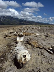Images from the drought stricken Washoe Lake in June