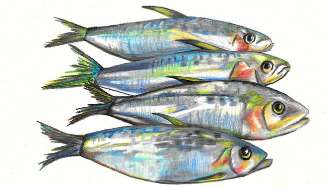 """""""Sardines are an excellent source of the omega-3 fatty acids EPA and DHA,"""" says naturopath Dr. Brian Myers of La Quinta's Live Well Clinic."""