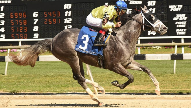Destin made Todd Pletcher a winner again in the Sam F. Davis Stakes.