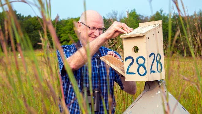 Professor Peter Dunn checks the birdhouses at the UWM Field Station located in Saukville.