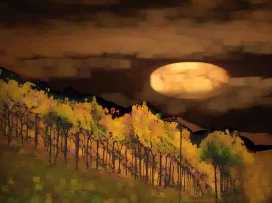 VineyardMoon - Joan Constable