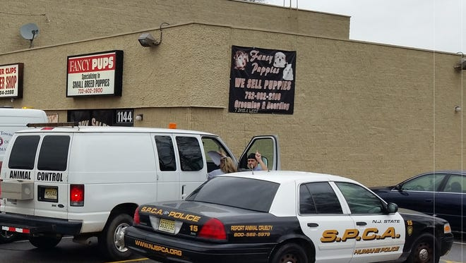 Woodbridge Animal Control and the NJSPCA raided Fancy Pups earlier this month.