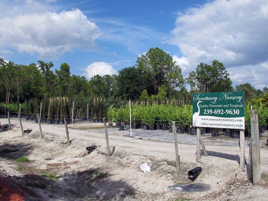 Sanctuary Nursery cleared 9 acres across Sanctuary Road North for an extension of the longtime landscaping business.