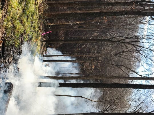 A prescribed fire in Brown County Hills in 2017.