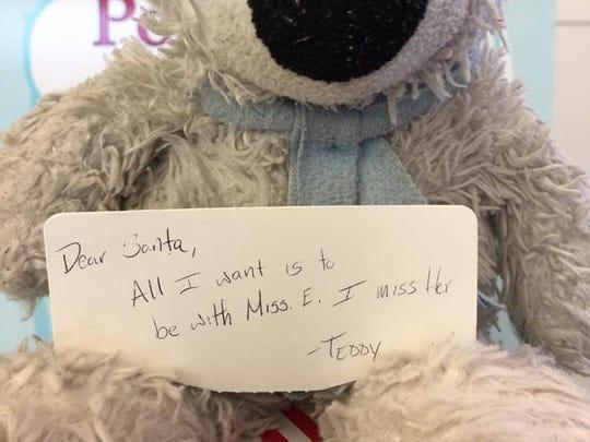 Teddy misses his owner.