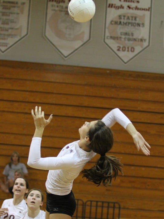 -TLHBrd_01-31-2014_Democrat_1_C004~~2014~01~30~IMG_-District_volleyball_1_1_.jpg