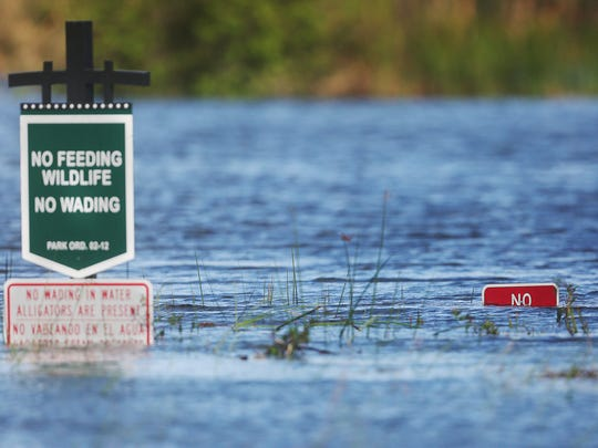 Portions of Lakes Park in south Fort Myers remain flooded from Hurricane Irma.