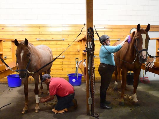 Horses being used in the PTSD research project are groomed at the Bergen Equestrian Center in Leonia.