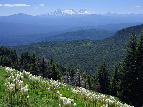 Cascade Range views from Crescent Mountain.