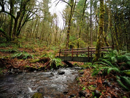 oregon top 5 best hikes near corvallis. Black Bedroom Furniture Sets. Home Design Ideas