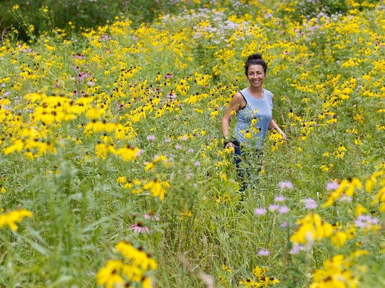 Sarah Wolff with Olmsted Parks Conservancy gives a tour of a recently restored large prairie area in Cherokee Park. July 8, 2016