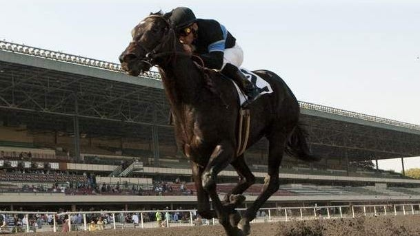 Shared Belief, with jockey Corey Nakatani, wins the Grade III Hollywood Prevue Stakes.