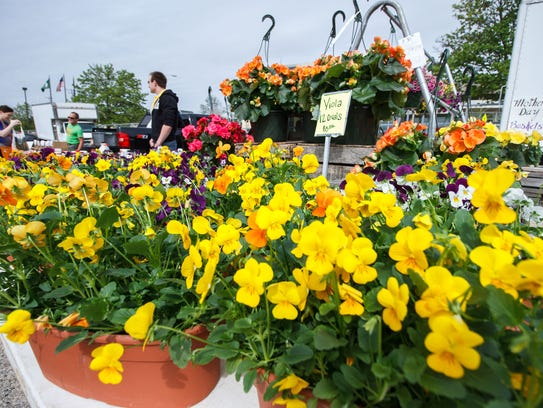 Customers shop for flowers at the Waukesha Farmers