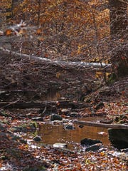 A stream along the trains in Beaver Valley.