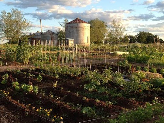 The community garden at Duke Farms.