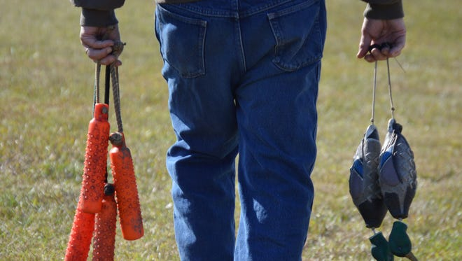 """Bumpers being placed for dogs at the 1st annual """"duck dog tune-up,"""" hosted by the Central Louisiana Retriever Club."""