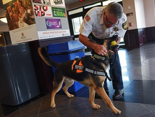Dog Training Sioux Falls