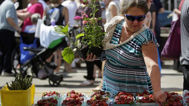 The Downtown Appleton Farm Market will return to the outdoors on Saturday. In this photo, Donna Mrnak of Freedom holds plants while picking out strawberries at Salzman's Produce booth last season.