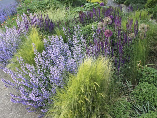 Gardening in a post-wild' world? Book plants ideas for a new approach