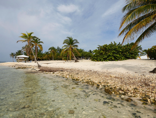 Best Place To Rent A Car In Grand Cayman