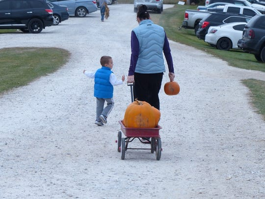 Customers leave Homestead Animal Farm with their pumpkins in tow.