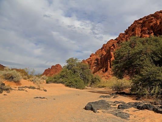SCSP Johnson Canyon Trail