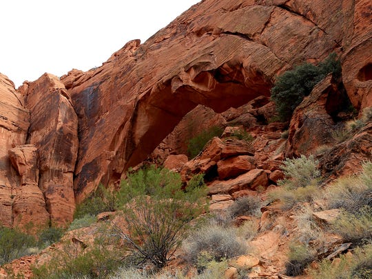 Scenery from Johnson Canyon in Snow Canyon State Park.