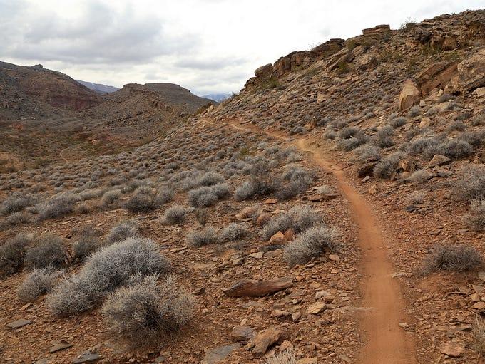 Precipice Trail in the Santa Clara River Reserve.