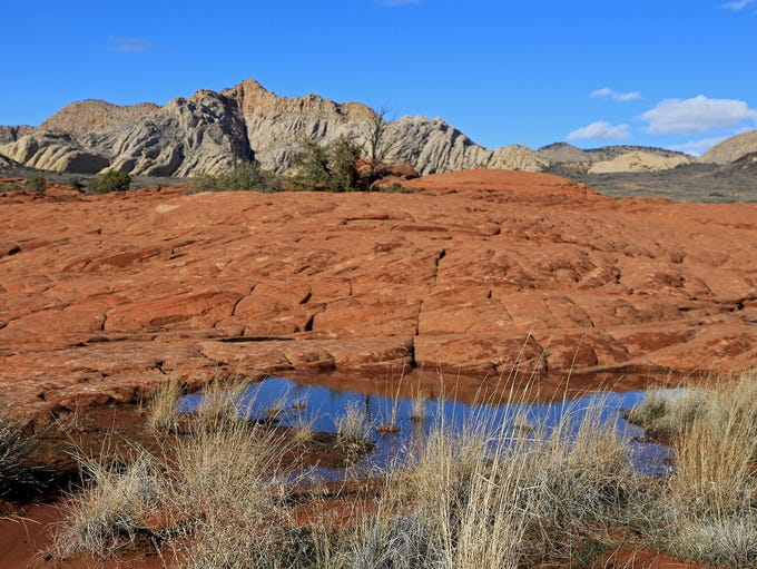 Petrified Dunes Trail in Snow Canyon State Park.