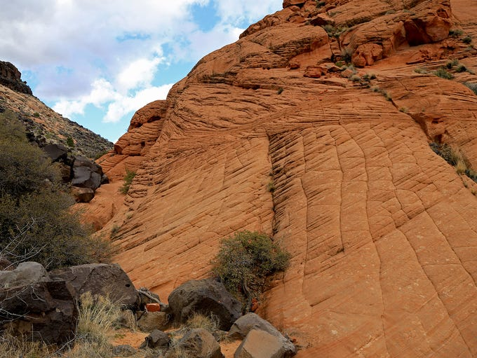 Yellow Knolls Trails in the Red Cliffs Desert Reserve