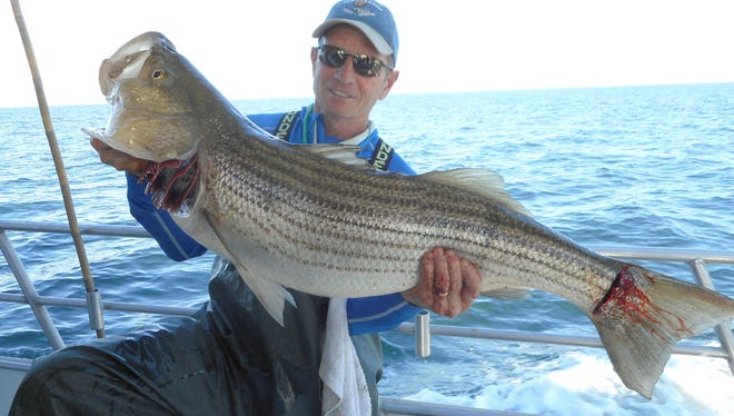 Paul Alesi from Point Pleasant caught this 29-pound striper fishing aboard the Sea Hunter .
