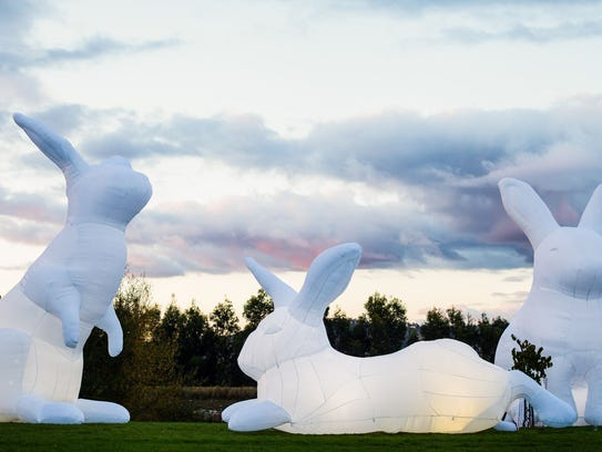 """Intrude"" by Amanda Parer."