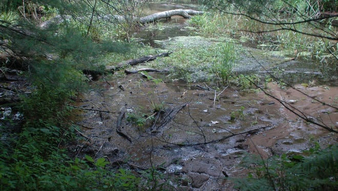 Stretches of the Little Plover River near Stevens Point have dried up at times due to heavy irrigation in the area.