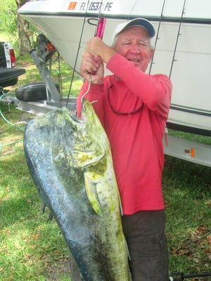 James Parks of Fort Pierce landed this 51-pound dolphin Friday while slow trolling live baits from Dave's Live Baits in 350 feet of water.