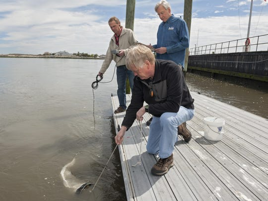 Joe Farrell (in blue shirt), resource management specialist with the College of Earth Ocean and Engineering; Ed Wherat (in green/tan jacket), program coordinator of the UD citizen water monitoring program; and Muns Farestad (in black pullover) UD labratory staff, sample water from the Delaware Bay.