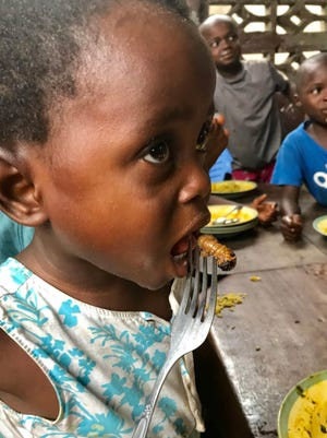 Farms for Orphans is a Loveland-based nonprofit feeding African orphanages with edible insects.