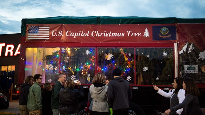 People view the Capitol Christmas tree in its trailer during its stop Tuesday, Nov. 22, 2016, outside the Opry Mills Bass Pro Shop. The tree is on its way from Payette National Forest in Idaho to Washington, D.C.