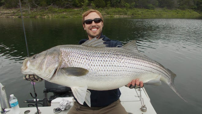 Paul's biggest striper topped 27 pounds during recent fishing trip on Norfork Lake.