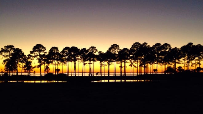 A fading sunset outlines trees in Port St. Joe, Fla.