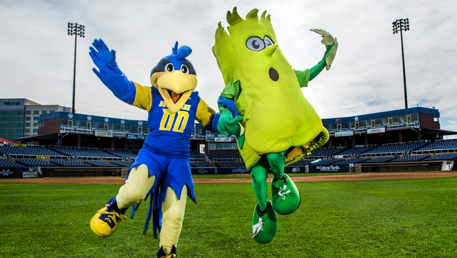 University of Delaware mascot YoUDee (left) and Wilmington Blue Rocks mascot Mr. Celery (right) pose for a portrait at Frawley Stadium in Wilmington on Tuesday afternoon.