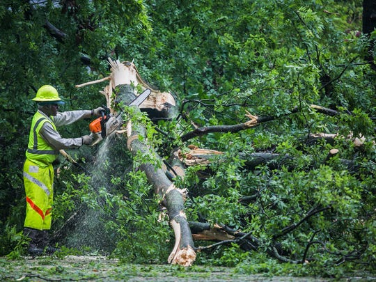June 23, 2017 - A City of Memphis employee, who didn't want to be identified, cuts tree debris after it fell and blocked a lane near 2450 Union Ave. on Friday. Wind gusts from a morning storm were reported from 30 mph to 40 mph in Memphis.