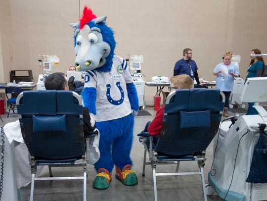 Blue, the Colts mascot, entertains at the Bleed Blue