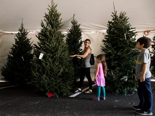 Crystal Goetz and her children Grayson, 7, and Harper,4, pick out a Christmas tree at Uncle Al's Christmas Trees in Fort Myers on Tuesday 11/28/2017.