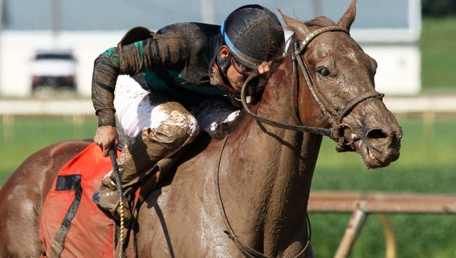 Apprentice jockey, Juan Saez, died as a result of a fall, Tuesday night, at Indiana Grand.