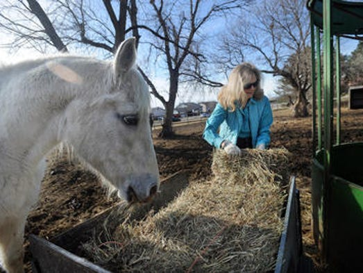 Lois Brown loads hay into feeder for her horses at 600 North Bahnson Avenue in Sioux Falls, S.D. Friday, April 11, 2014.